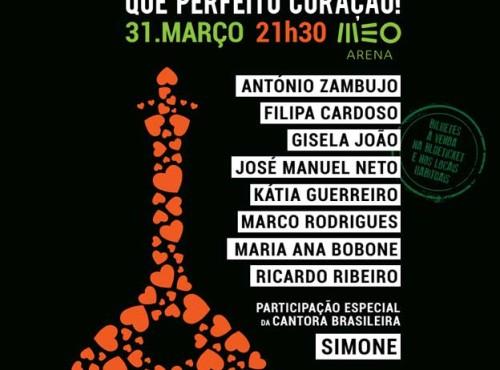 Homenagem a Amália, Concerto Solidário